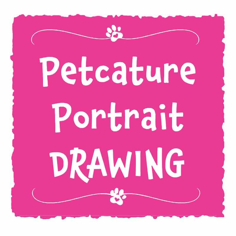 KiniArt Pet Portrait Drawing