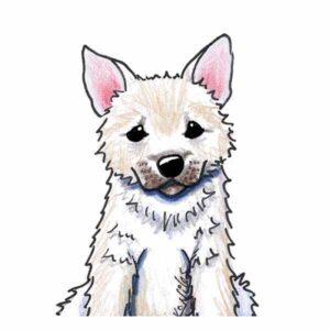 KiniArt Norwegian Buhund Puppy