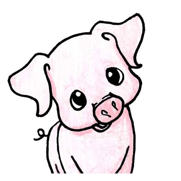 KiniArt Pig