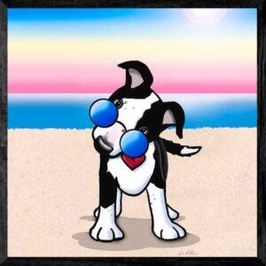 Aussie Cattledog Beach